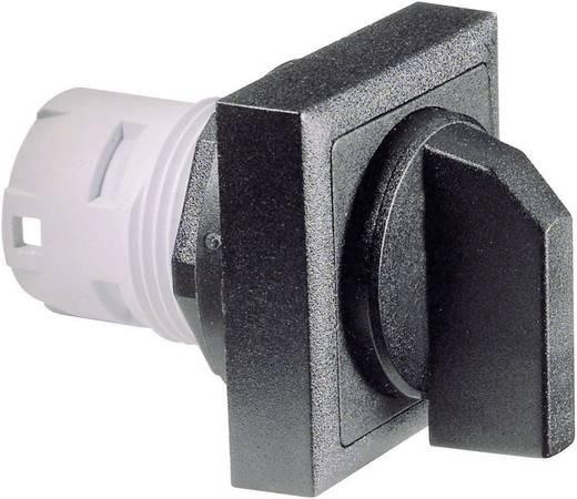 RAFI Választógomb reteszelés nélkül (nincs megvilágítás) 1.30073.690 2 x 40 ° Fekete