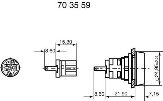 RAFI Izzófoglalatok W 2 x 4,6 d 60 V 1.71212.001