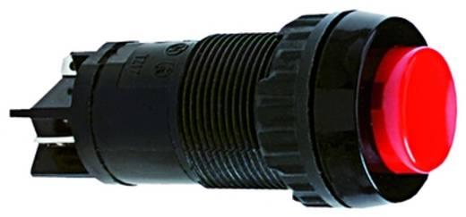 RAFI Világító nyomógomb, 20,3 mm, 1.15.112.101/0000 Világító nyomógomb 250 V 2 A 5 db