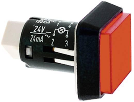 Nyomógomb 35 V 0.1 A 1 x ki/be RAFI 1.15.150.606/0000 IP65 5 db