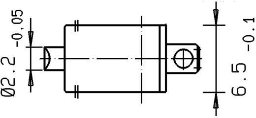 Szubminiatűr kapcsoló, DZ1G-A1BA