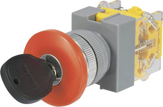 Kulcsos kapcsoló, 250 V/AC, 5 A, 2 x 90 ° beépítési Ø 22 mm Conrad Y090-A-11YM/23