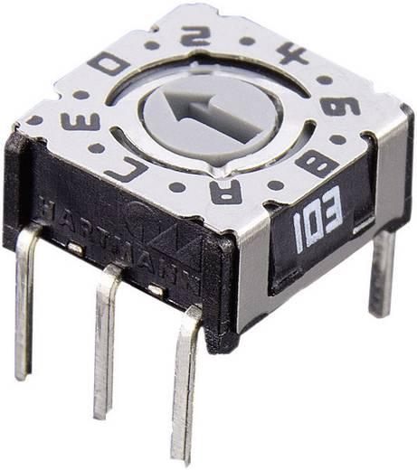 Forgó kódkapcsoló 16jegyű hexadecimális P36 103