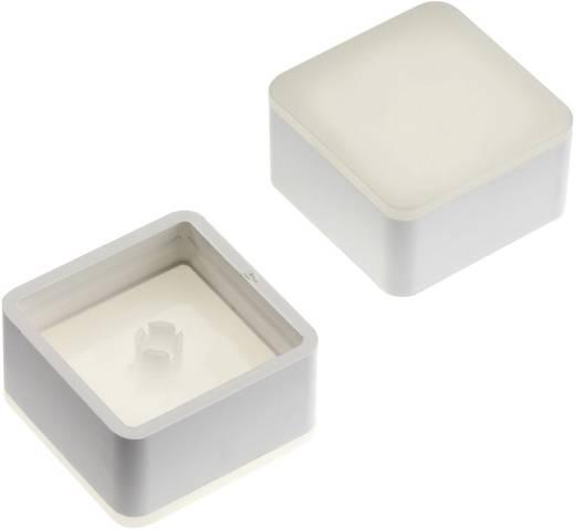 Nyomógomb kupak teljes kivilágítással Mentor 2271.1017 Fehér (diffúz) Nyomógomb RAFI MICON 5