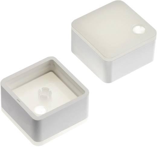 Nyomógomb kupak teljes vagy pontszerű kivilágítással Mentro 2271.1118 fehér (diffúz) RAFI MICON 5