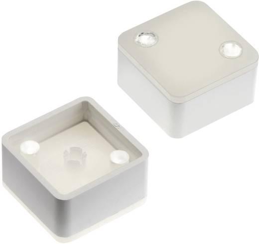 Nyomógomb kupak teljes vagy pontszerű kivilágítással Mentor 2271.1218 fehér (diffúz) RAFI MICON 5