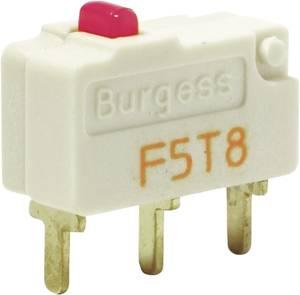 Mikrokapcsoló egyenes 21mm F5 Burgess