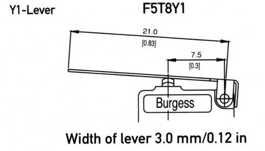 Mikrokapcsoló egyenes 21mm F5