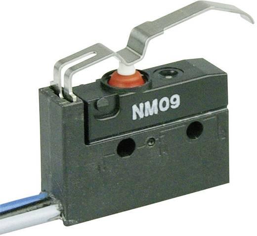 Mikrokapcsoló 250 V/AC 6 A 1 x BE/(BE) Cherry Switches NM09-0045 IP67 nyomó 1 db