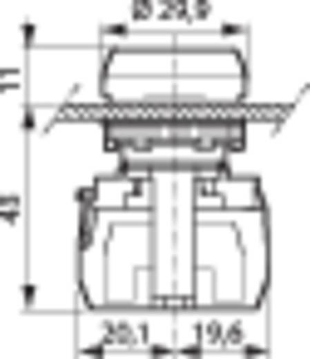 Nyomógomb, krómozott elülső gyűrű, sárga BACO L21AA04C 1 db