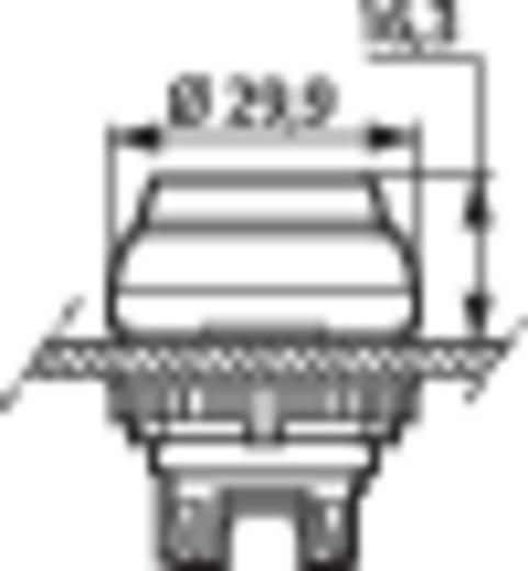 Világítós nyomógomb, krómozott előlap, sárga, BACO L21CK40