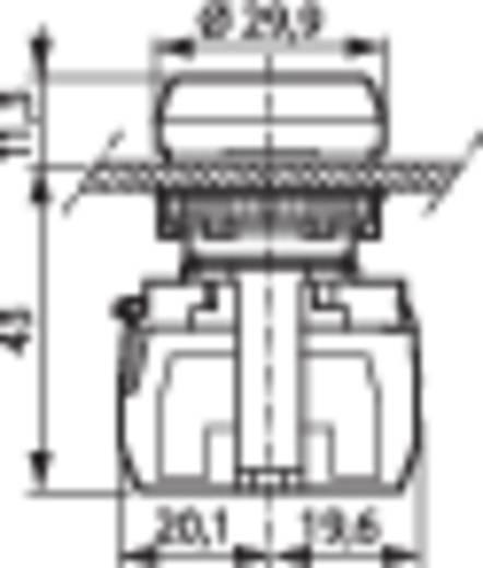 Jelzőlámpa, LED elemmel, fehér 24 V/DC, 24 V/AC BACO L20SE50L 1 db