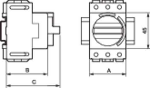 Terhelés leválasztó kapcsoló, 25 A 1 x 90 ° szürke, fekete BACO 174005 1 db