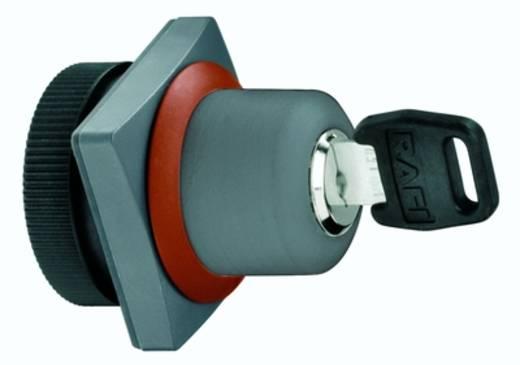 Kulcsoskapcsoló szürke 1 x 90 ° RAFI 1.30.255.371/0800 2 db