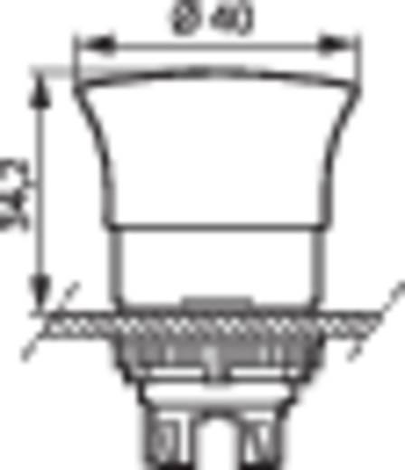 Gomba nyomógomb Műanyag előlapi gyűrű Piros BACO L22DD01 1 db