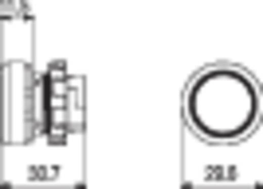 Nyomógomb Fehér Pizzato Elettrica E21PU2R2210 1 db