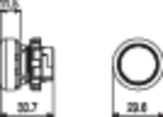 Nyomógomb Fekete Pizzato Elettrica E21PL2R5210 1 db