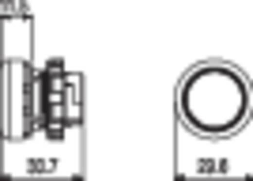 Nyomógomb Fekete Pizzato Elettrica E21PU2R1290 1 db