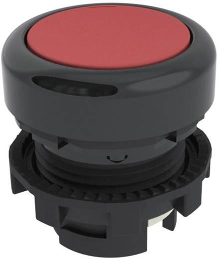 Nyomógomb Piros Pizzato Elettrica E21PU2R3210 1 db