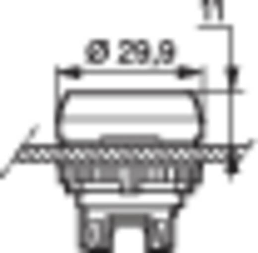 Nyomógomb Piros BACO L21AH10 1 db