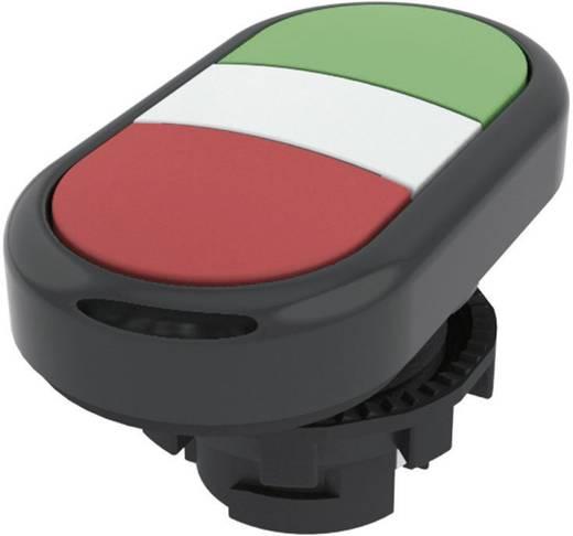 Kettős nyomókapcsoló, lapos működtető zöld, piros Pizzato Elettrica E21PDRL10423 1 db
