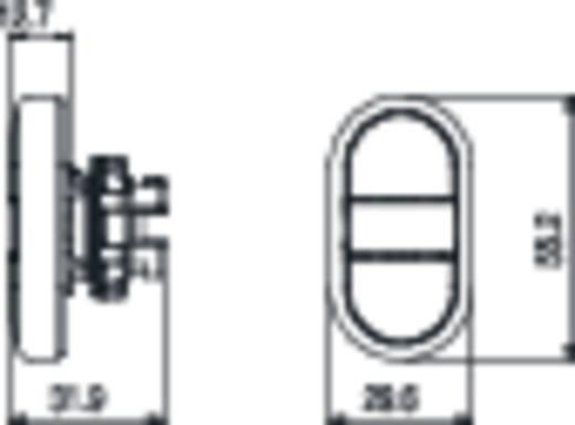 Kettős nyomókapcsoló, lapos működtető fehér, fekete Pizzato Elettrica E21PDRL1AAAA 1 db