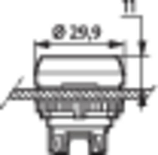 Nyomógomb, krómozott elülső gyűrű, fehér BACO L21CH50 1 db