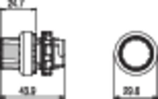 Fekete 2 x 45 ° Pizzato Elettrica E21SE43GCE19AB 1 db
