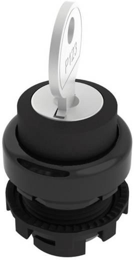 Kulcsoskapcsoló fekete 1 x 45 ° Pizzato Elettrica E21SC2ACA11AA 1 db