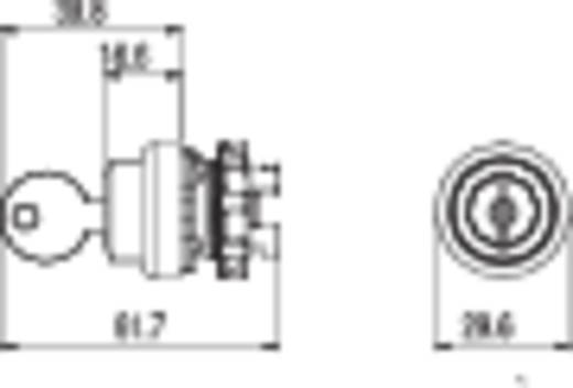 Kulcsoskapcsoló fekete 2 x 45 ° Pizzato Elettrica E21SC3GCE19AA 1 db