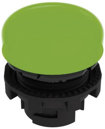 Világító előtét zöld Pizzato Elettrica E21ILA410 1 db