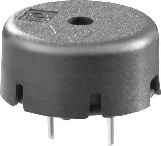 Piezo-zümmer Hangerő: 70 dB/10 cm 30 V/AC Tartalom: 1 db