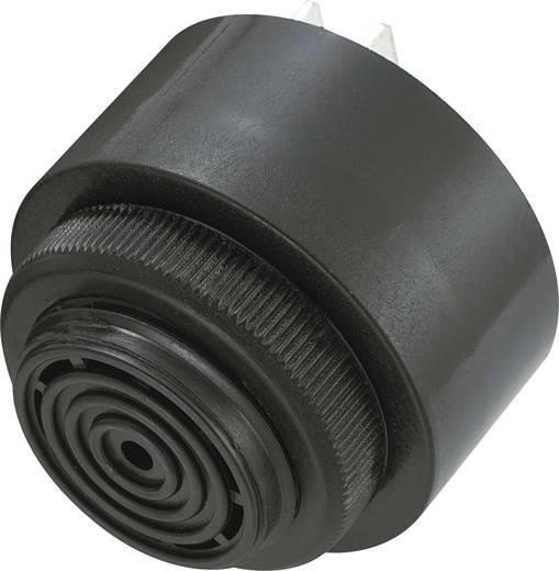 Piezo zümmer, KPI sorozat Hangerő: 85 dB 230 V/AC Tartalom: 1 db