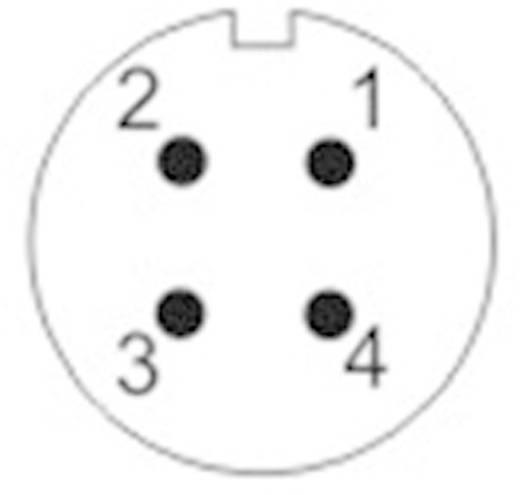 Kerek dugaszolható csatlakozó Push-Pull IP67 Pólusszám: 4 Kábeldugó
