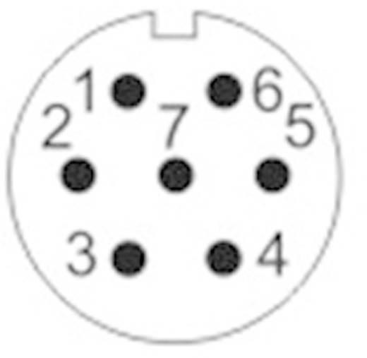 Kerek dugaszolható Push-Pull csatlakozó, IP67 Pólusszám: 7 Peremes hüvely 5 A SF1213/S7 Weipu 1 db