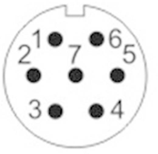 Push-Pull kerek dugaszoló csatlakozó IP67 Pólusszám: 7 In-Line kábelhüvely 5 A SF1211/S7 II Weipu 1 db