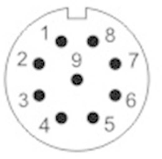 Kerek dugaszolható Push-Pull csatlakozó, IP67 Pólusszám: 9 Peremes hüvely 3 A SF1213/S9 Weipu 1 db