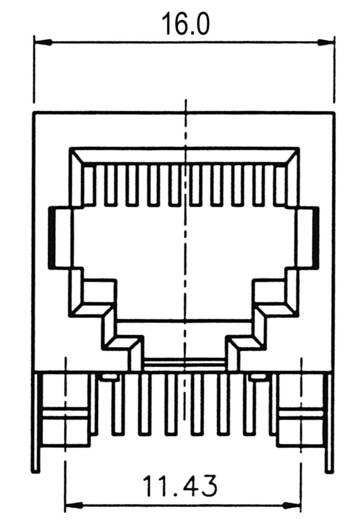 Moduláris beépíthető alj, 8 pólusú, árnyékolt Pólusszám: 8P8C A-20042-LP/FS ezüst ASSMANN WSW