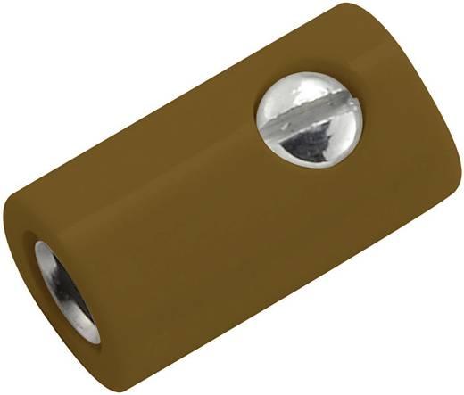 Miniatűr laboratóriumi hüvely Alj, egyenes stift Ø: 2.6 mm Barna 1 db