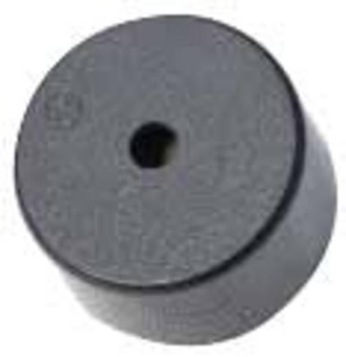 Piezo zümmer Hangerő: 110 dB 3 - 30 V/DC Tartalom: 1 db