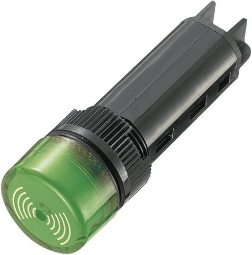 Akusztikus jeladó 80 dB 230 V/AC zöld, 16 mm, szakaszos