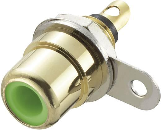 Beépíthető RCA csatlakozóaljzat, aranyozott zöld