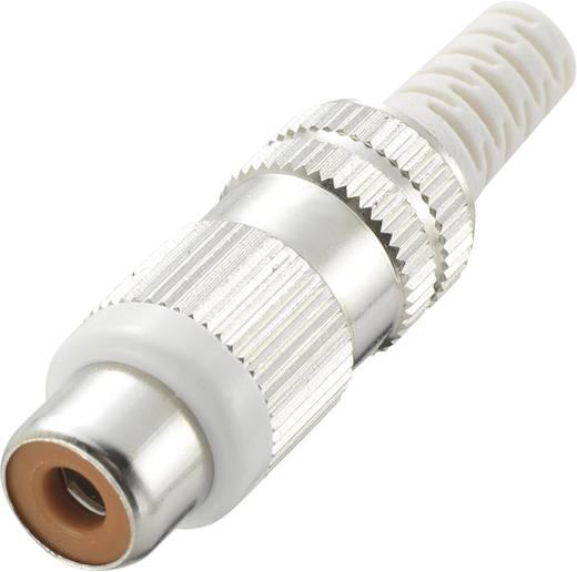 RCA csatlakozó alj, egyenes pólusszám: 2 sárga 1 db, kábel Ø 4,1 mm