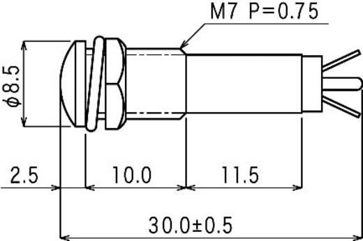 Neon jelzőlámpa, BN-0755, 230V, átlátszó