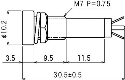 Neon jelzőlámpa, BN-0756, 230V, átlátszó