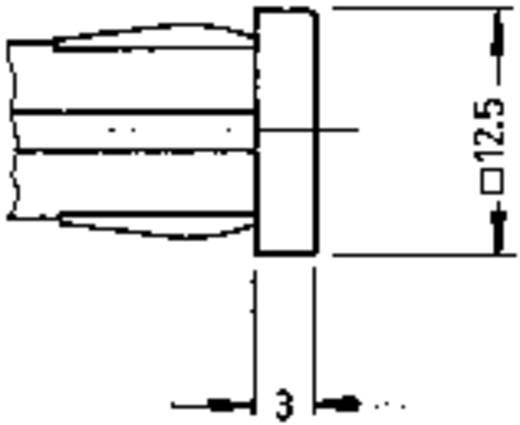 RAFI jelzőlámpa izzóval, 28V, 1,2W, piros (átlátszó), 1.69.507.125/1301