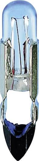 Steklámpa T5,5 K, 24V 0,48W