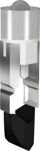 Fehér LED jelzőfény (jelzőlámpa helyettesítő) Signal Construct MEDK5564 Fehér Üzemi feszültség 24 V/DC Foglalat T5.5 k