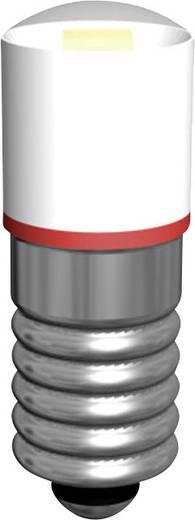 MULTI-LOOK-LED E5,5 fejjel Signal Construct MWCE5573 Zöld Üzemi feszültség 15 - 18 V/AC/12 V/DC Foglalat E5.4