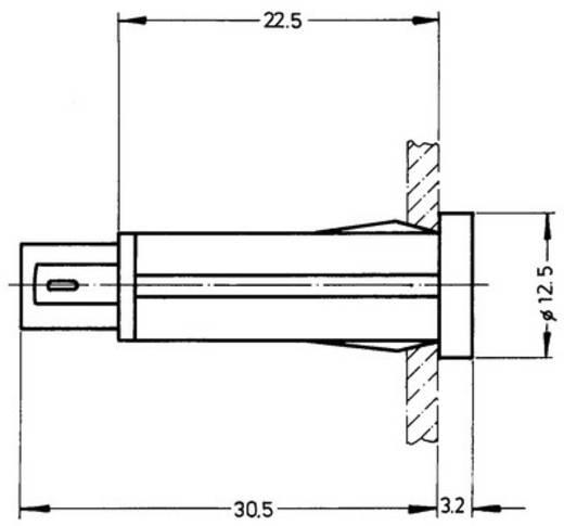 Rafi LED-es jelzőlámpa 24-28V 13-18,5mA, zöld, 1.69.525.210/1500